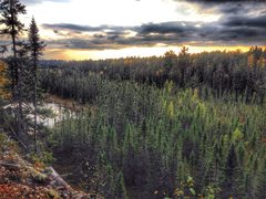 Rock Climbing Photo: The view from atop Mooselandia. The Swamp Wall swa...