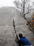 Rock Climbing Photo: Looking up on a warm October day .... climbers fee...