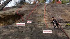 Rock Climbing Photo: quick reference