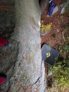 Rock Climbing Photo: Annticipation top-out.