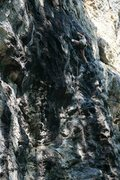 Rock Climbing Photo: getting the send on p1 of Black Mamba, Rumney NY