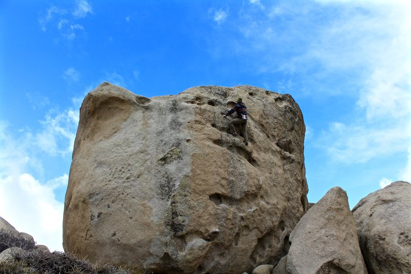 Rock Climbing Photo: Josh Lowy nearing the top of The Hive Boulder on T...