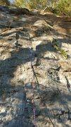 Rock Climbing Photo: Two Timer