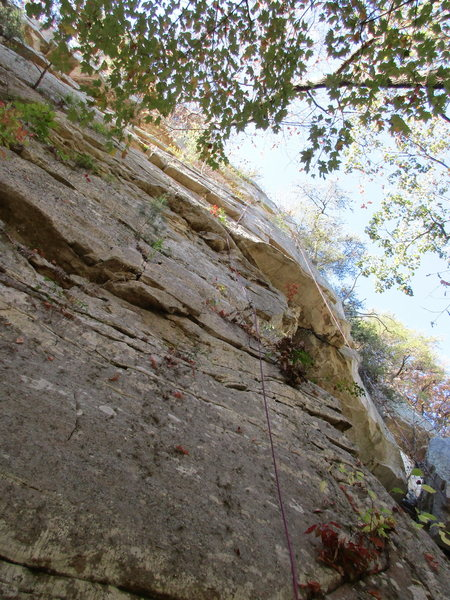 Rock Climbing Photo: Sideways Glance, Jamestown, AL