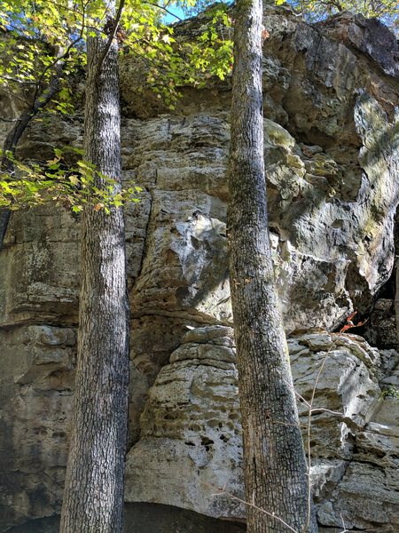 Rock Climbing Photo: Route starts left of the bulge and then climbs ove...