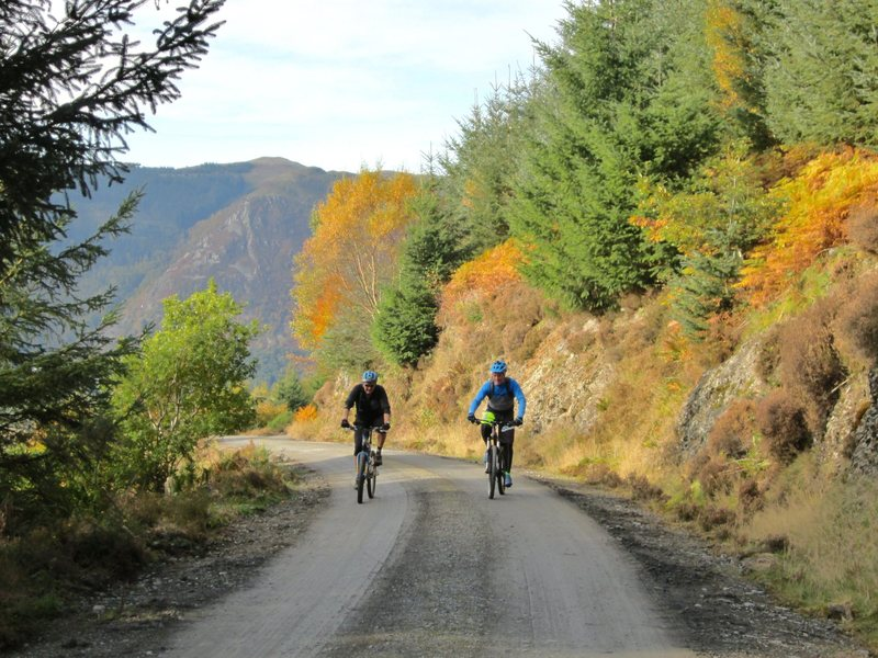 Fall biking on Dodd hill