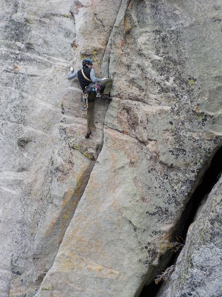 Rock Climbing Photo: Green Rosetta!