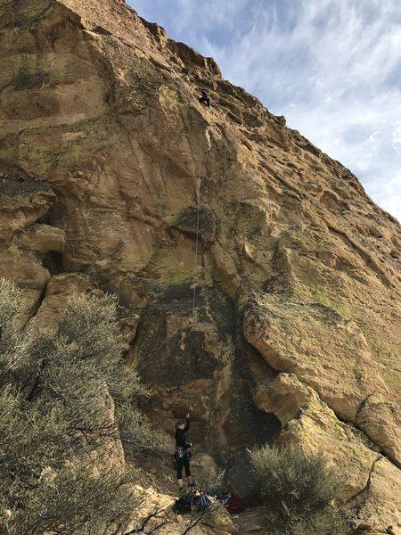 Climbing Lusty Lady
