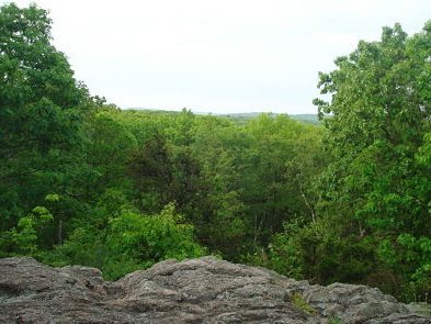 Rock Climbing Photo: View from the top of the rock ledges.