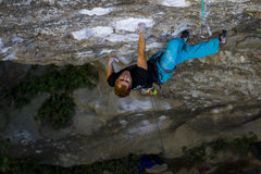 Rock Climbing Photo: Tuna Town 5.12D RRG