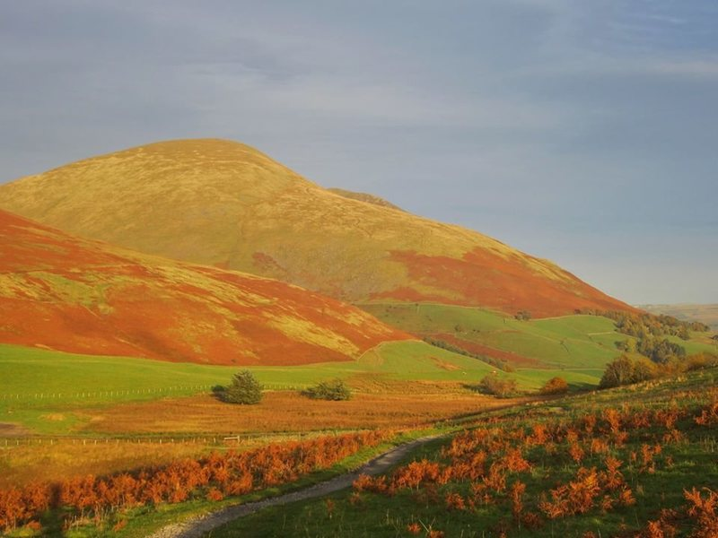 Blencathra Mt Autumn