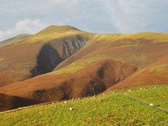 Rock Climbing Photo: Sheep and Skiddaw Mt