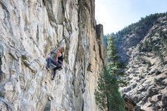 Rock Climbing Photo: Great linkup at Anarchy!