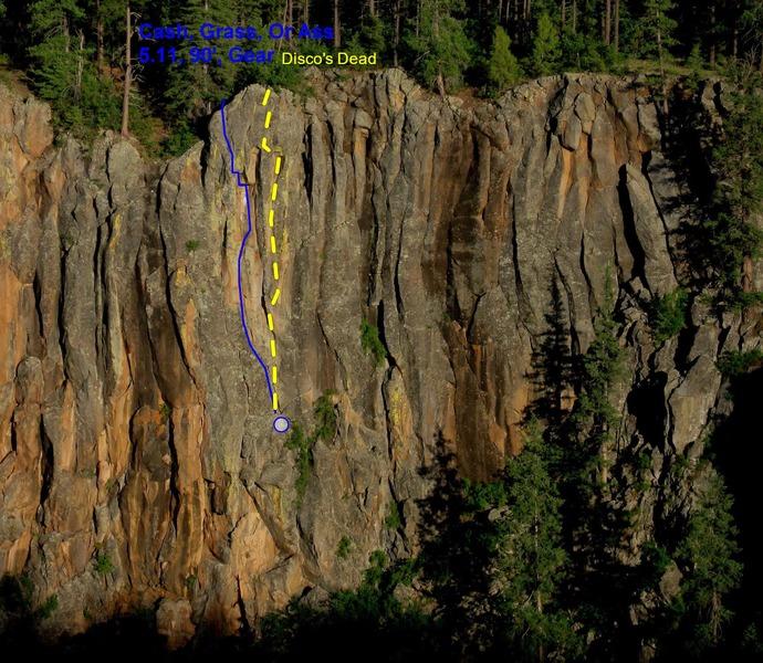 Rock Climbing Photo: Disco's Dead