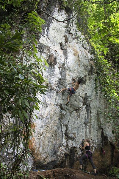 Rock Climbing Photo: Projecting King Crockett