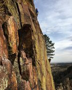 Rock Climbing Photo: Crackson on the traverse P3.