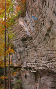 Rock Climbing Photo: Fall cruising weather on Banana Hammock (5.12-)