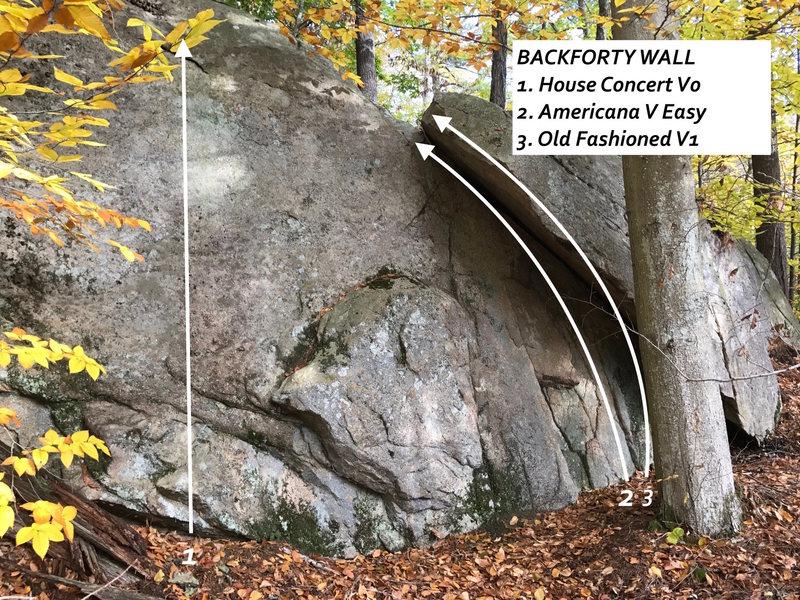 Rock Climbing Photo: Backforty Boulder overview.