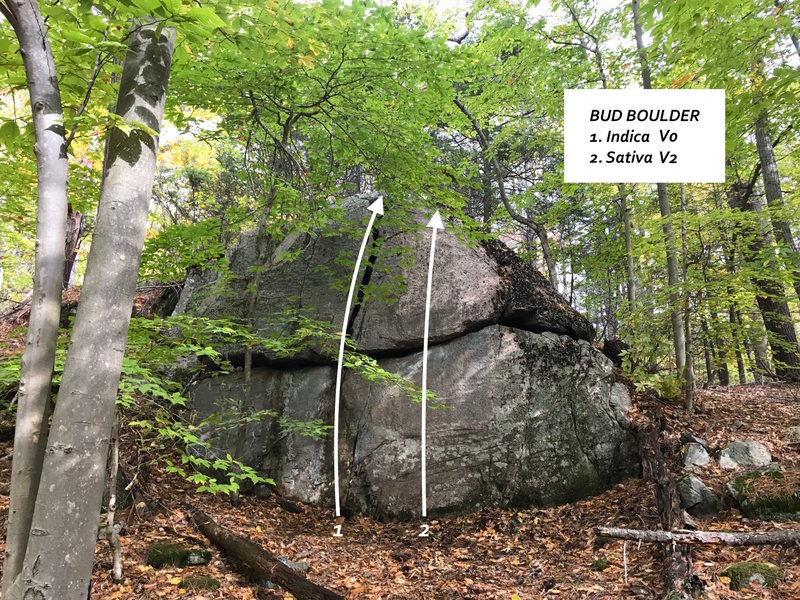 Bud Boulder overview.