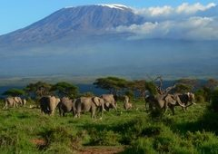 Mount Kilimanjaro is alpine trekking and rock climbing destination