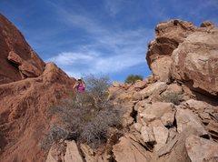 Rock Climbing Photo: ?
