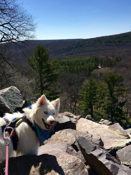 Rock Climbing Photo: Luna