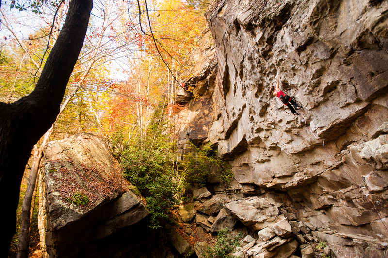 Fall Line in the fall. Photo by Dan Brayack.