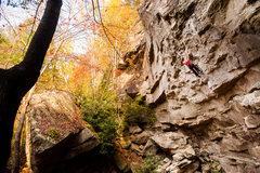Fall Line in the fall. Photo by Dan Brayack.