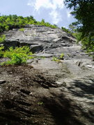 "Rock Climbing Photo: The Climb ""Snakeskins"" on Snakeskins Cra..."
