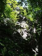 "Rock Climbing Photo: ""Bubba Butress""...sort of the ""Conc..."