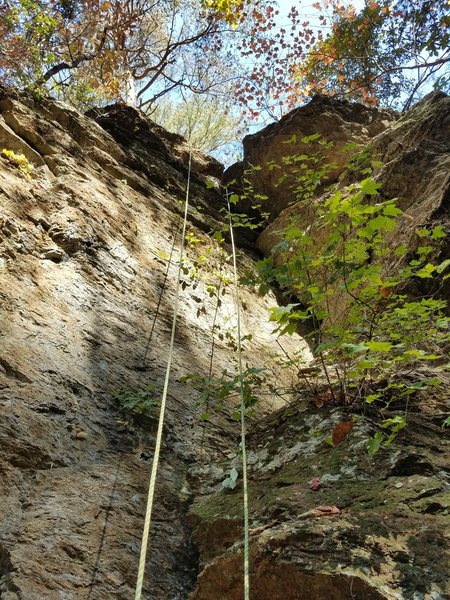 Rock Climbing Photo: The route is left of the crack.