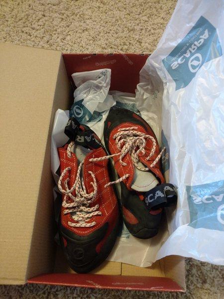 scarpas
