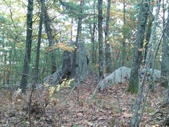 Rock Climbing Photo: Water Buffalo boulder as seen from the trail on th...