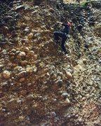 Rock Climbing Photo: Cobble city!