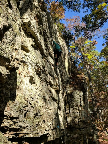 Kieley moves past the sweet holds and gets to the one semi-blank section of the climb.