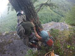 Rock Climbing Photo: Christie & sidekicks putting fresh anchors on the ...