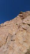 Rock Climbing Photo: The large dead oak was taken out by recent rockfal...