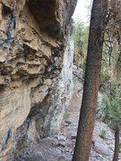Rock Climbing Photo: YP not burned