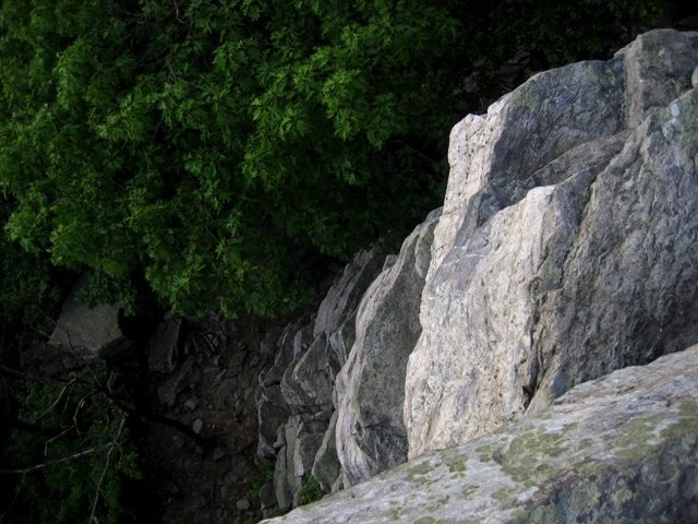 Rock Climbing Photo: Looking down In Your Face