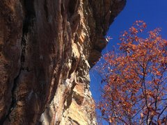 Rock Climbing Photo: A wild one!