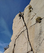 Rock Climbing Photo: Corey Todd leading SouthEast Crack - sector 9 Enve...