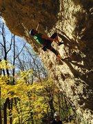Rock Climbing Photo: Projecting Gravity Amp (5.12a) on a classic Iowa f...