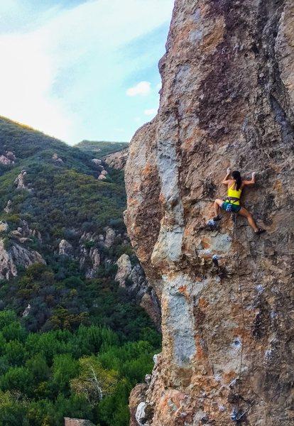 Rock Climbing Photo: Goin up Whippersnapper.