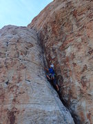 Rock Climbing Photo: DWAZ being very serious while searching for the ne...