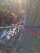 Rock Climbing Photo: Text Book Top Rope Anchor