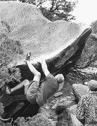 Rock Climbing Photo: Great White