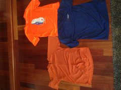 3 shirts all medium <br />Nike acg cycling shirt(dark orange) <br />Brooks running shirt(bright orange) <br />REI tech shirt(blue, REI outdoor school logo) <br />$15 for all three