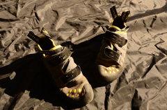 lasportiva Tarantula shoes
