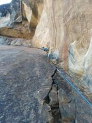 Rock Climbing Photo: 3rd pitch of Truffala Tree, 4th if you count Juman...