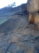 Rock Climbing Photo: 2nd pitch of Truffala Tree. 3rd if you count Juman...